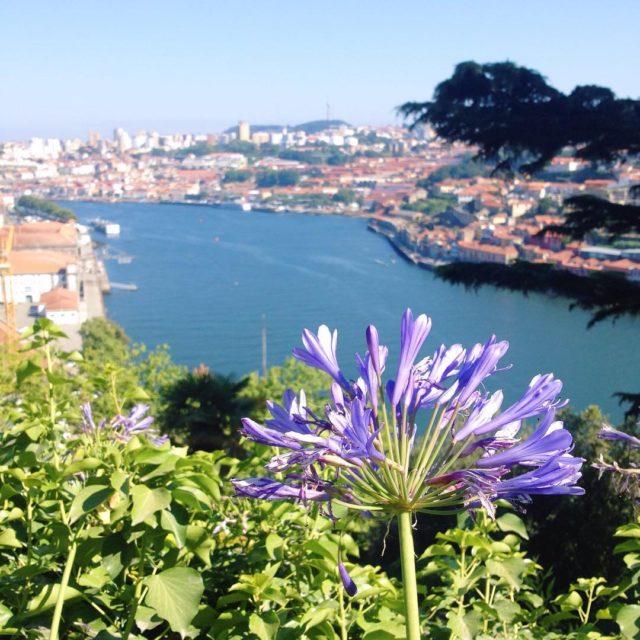 Da 12 Subir y bajar las cuestas de Oporto Patearhellip